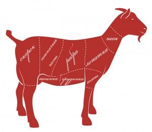 Схема как разделать козу. Козлятина. Разделка туши. Вкус и запах мяса. Фасовка и хранение козьего мяса. Свой опыт выращивания коз на мясо.