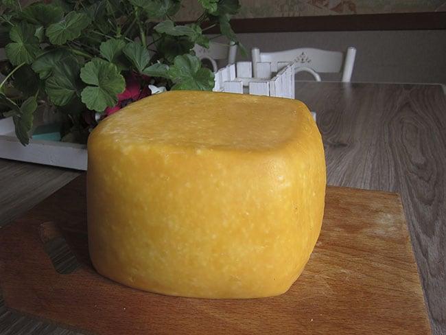 Домашний сыр из козьего молока фото