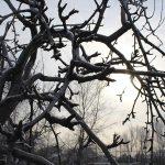 sezonnaya-depressiya